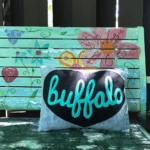buffalo artists schworm