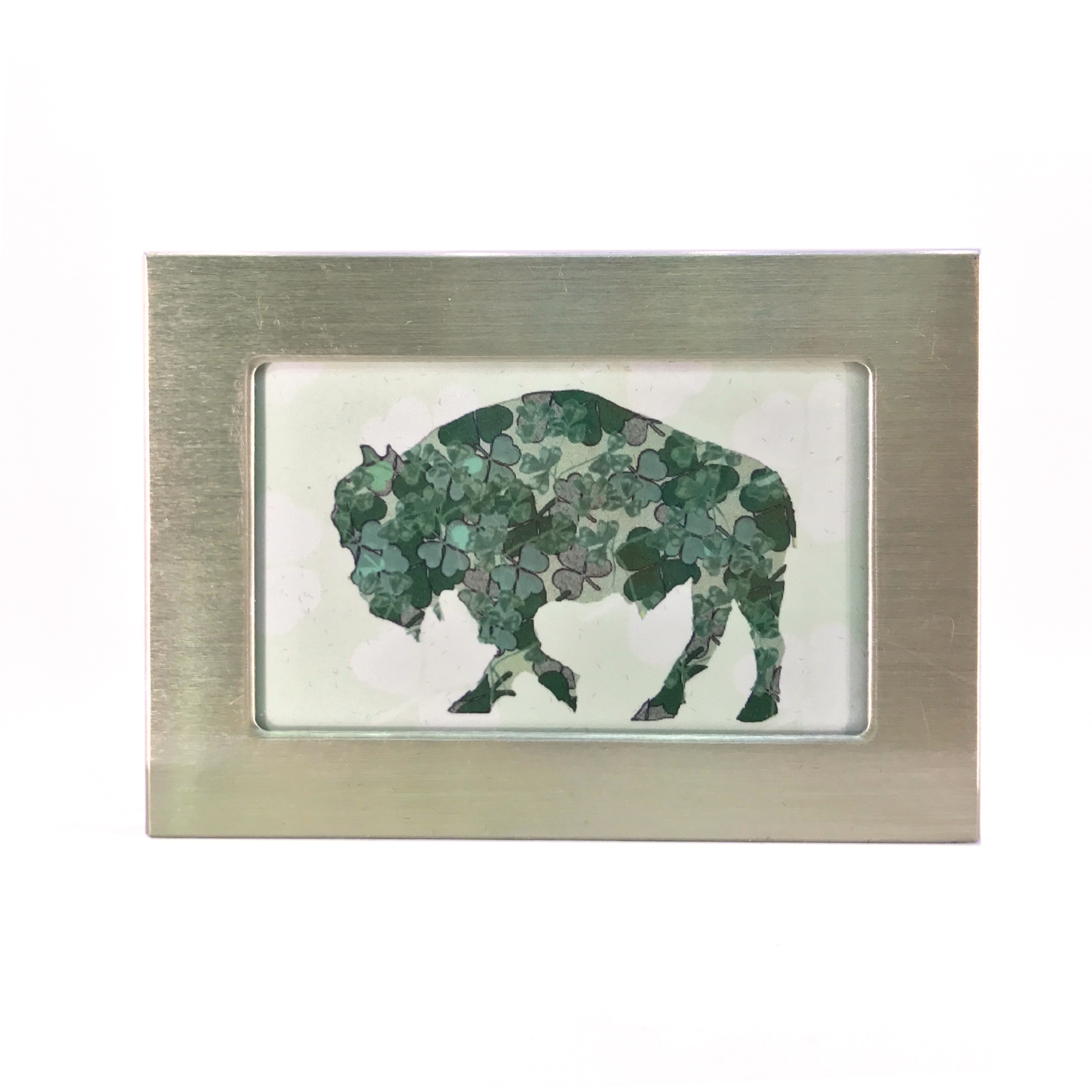 buffalo gift shamrocks