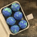 seed bombs made in buffalo ny gift shop
