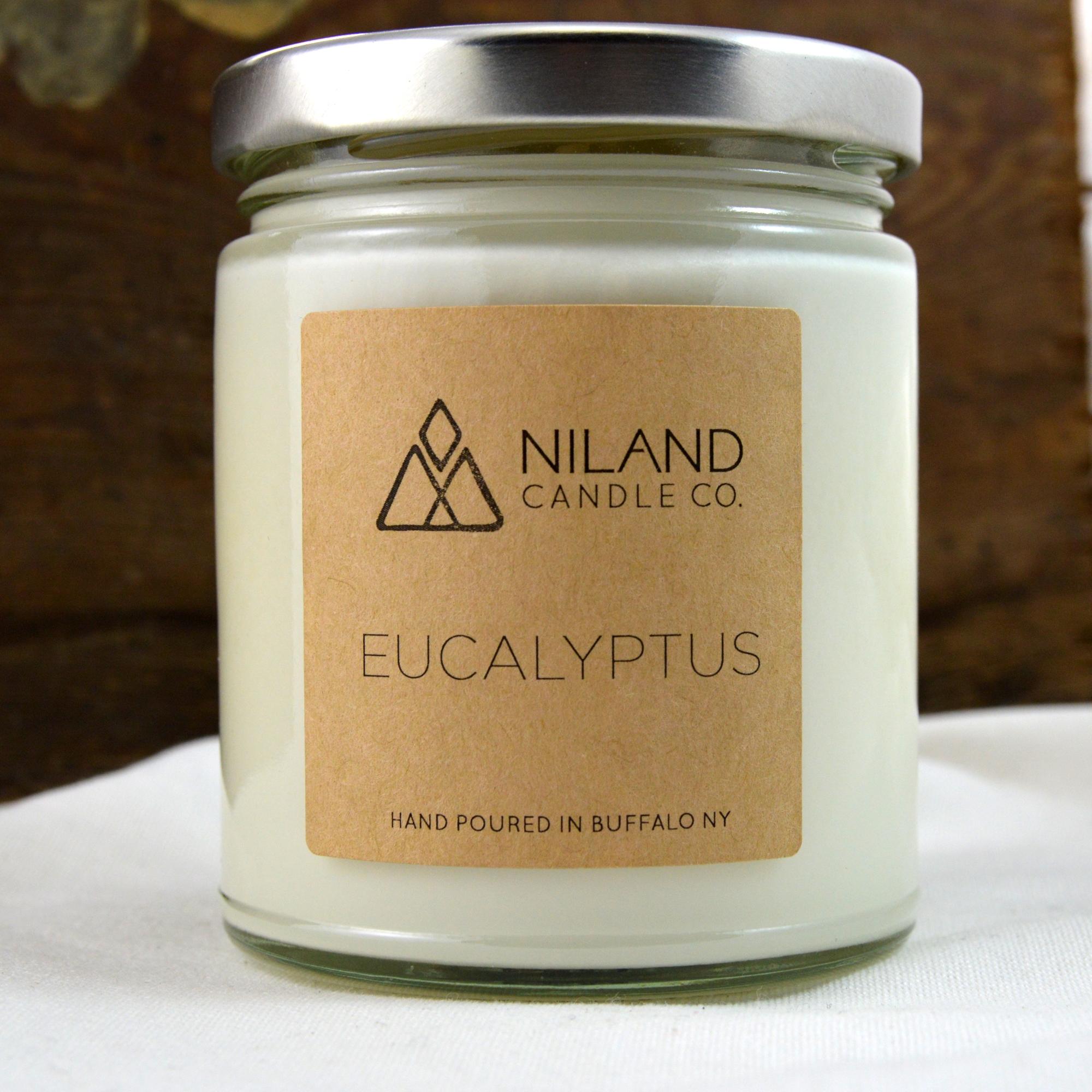 eucalyptus soy candle made in buffalo ny gift shop