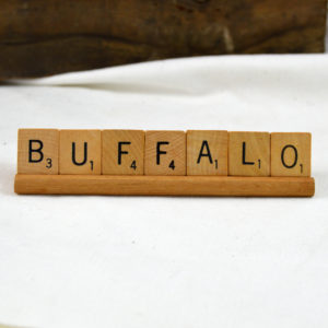 buffalo home decor made in buffalo ny gift shop