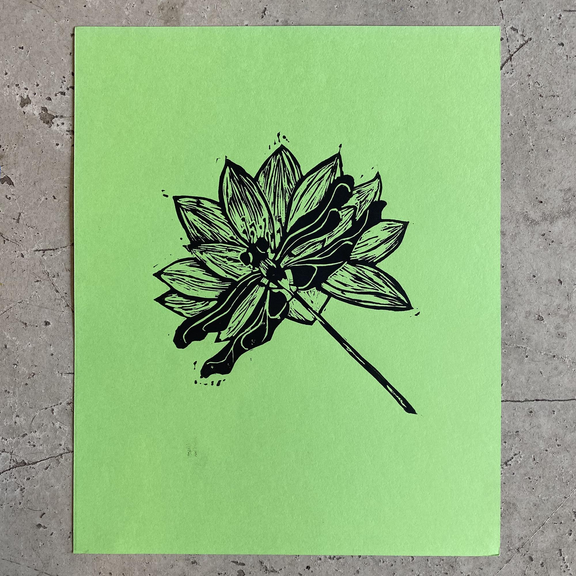 dragonfly lotus wall art made in buffalo ny gift shop